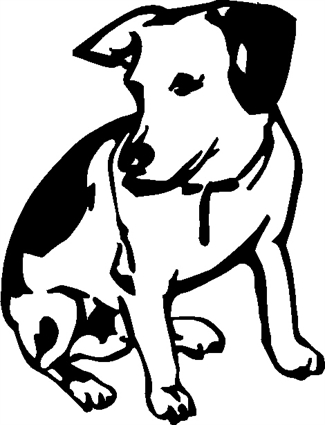 jack-russell01