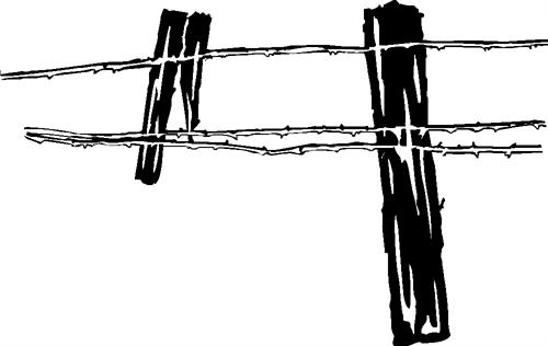 barb-wire-fence