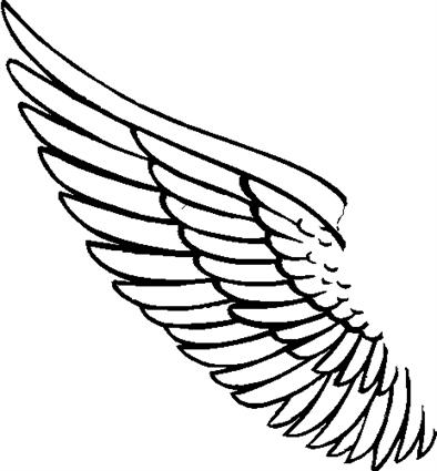 angel-wing