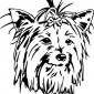 west-highland-terrier01