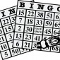 bingo-cards-with-dauber